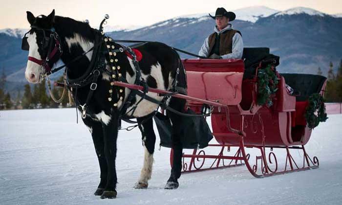 private sleigh rides