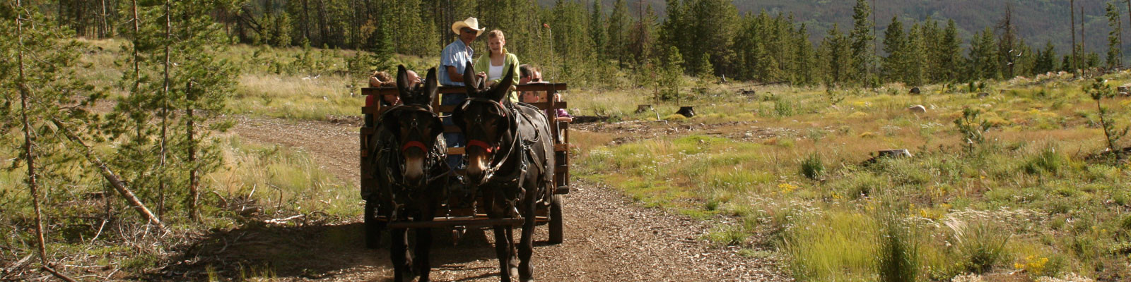 Frisco, CO Summer Chuckwagon